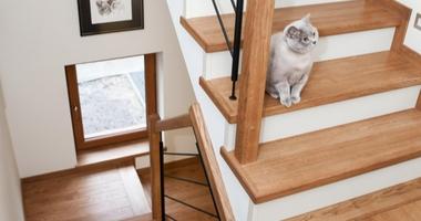 Прямая двухмаршевая лестница с площадками из дуба